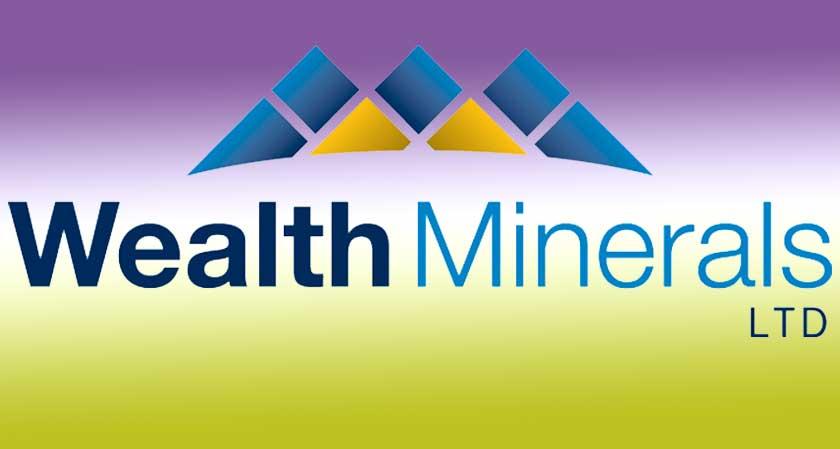 Wealth Minerals gets satisfying results after surveys at Laguna Verde