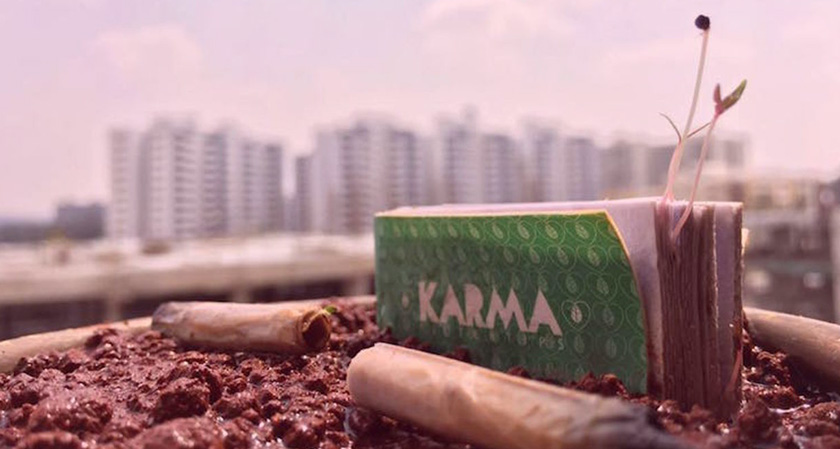 Cigarette butts that grow into plants!