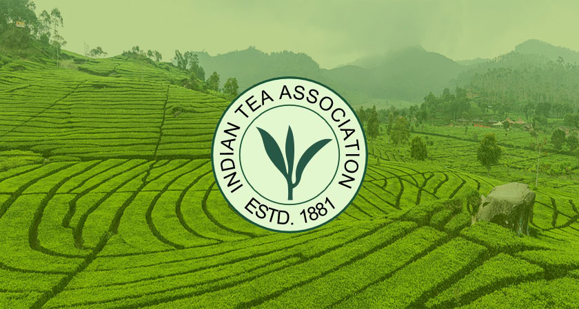 India's Tea Estates Will Soon Be Driven By Chinese Technology