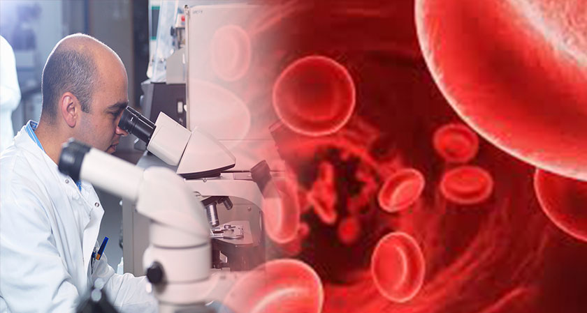 Researchers find a more efficient system to analyze blood cells' data