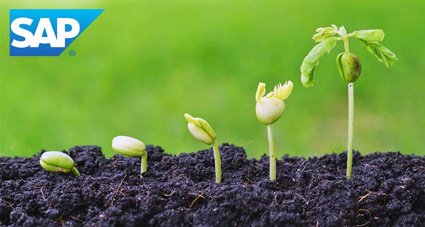 SAP to Assist Agricultural Supply Chains